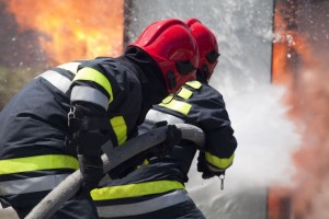 Immagine firefive (1)